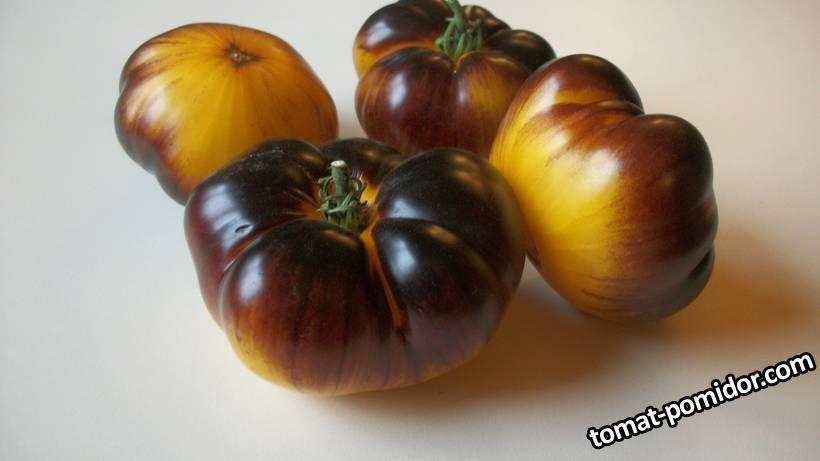 Описание сорта томата волверин и его характеристики