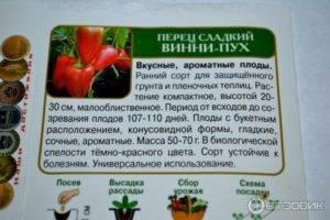 Перец «винни пух»: характеристика и описание, как выращивать