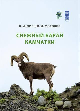 Происхождение и биологические особенности овец