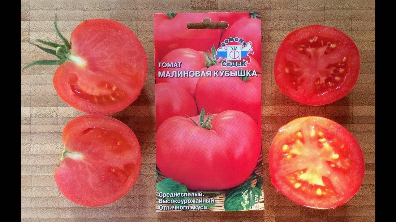 Томат чибис: описание сорта, рекомендации по выращиванию