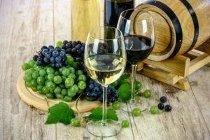 Что делать, если домашнее вино перестало бродить (не забродило вовсе)