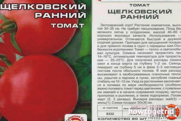 Томат бурковский ранний: неприхотливый сорт для всех регионов