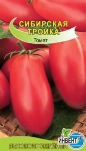 Характеристика и описание сорта помидоров сибирская тройка