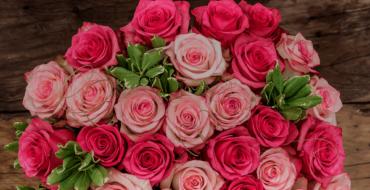 Английские розы – сорта с описанием и фото, особенности выращивания, обрезка и уход за растением
