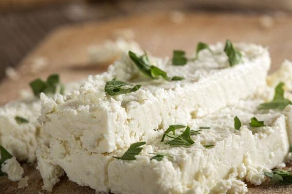 Сыр с голубой и белой плесенью — польза и вред деликатеса для организма