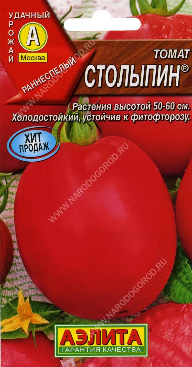Описание и характеристики одного из самых вкусных сорта томата — «столыпин»