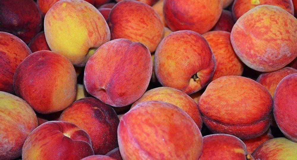 Виды персиков: описание сортов, правила выбора для регионов с фото