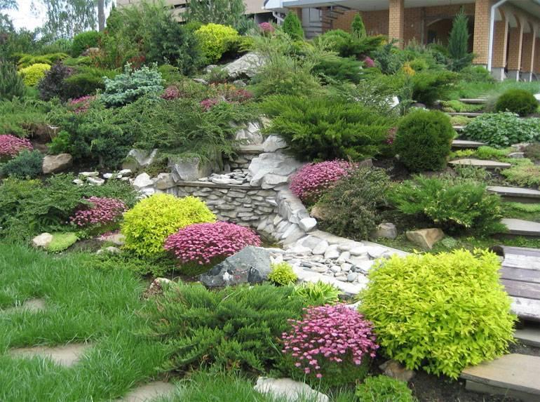 Лучшие тенелюбивые многолетники для темных участков сада + 3 идеи цветников