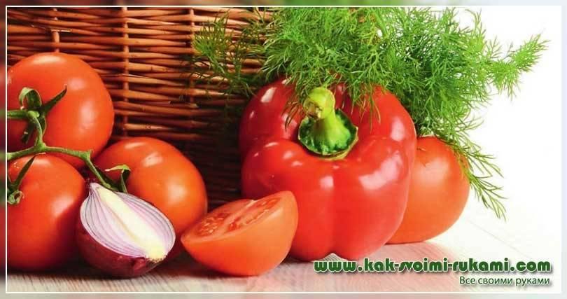 Как подготовить погреб для хранения овощей