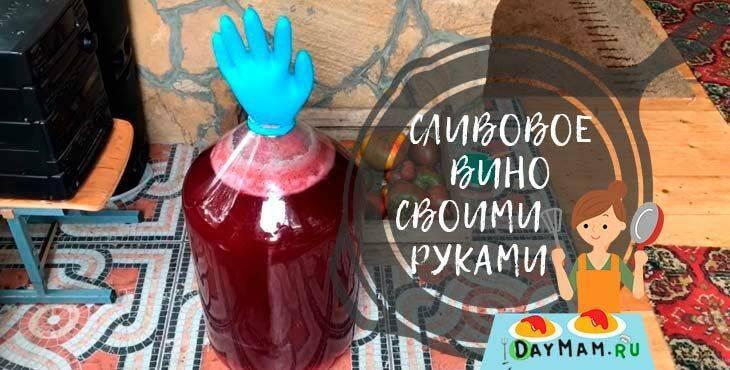 Рецепты домашних настоек водки, самогона и спирта на черносливе