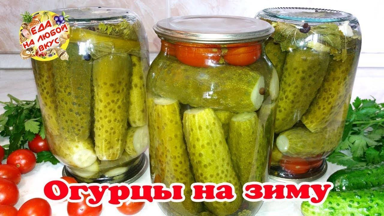 Рецепт соленых огурцов для хранения в квартире