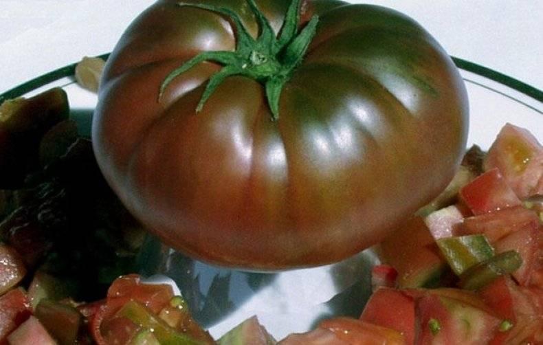 Томат черномор: фото с описанием, характеристика, урожайность, отзывы
