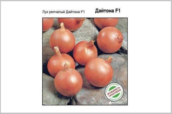 Характеристика и описание гибрида лука стардаст f1, выращивание и уход