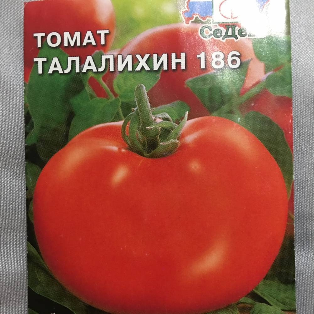 Вкусный сорт с длительной урожайностью — томат алей: советы садоводов по посадке и уходу