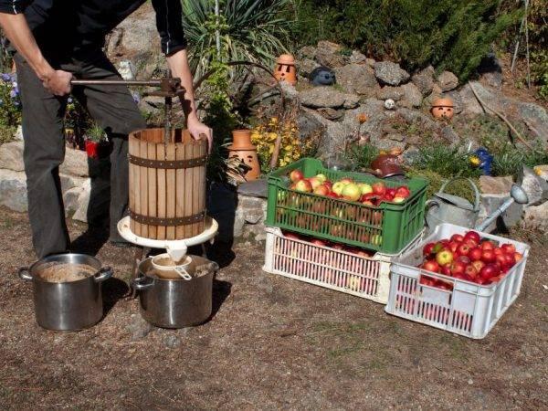 Разновидности садового инвентаря для удаления сорняков и как сделать инструменты своими руками