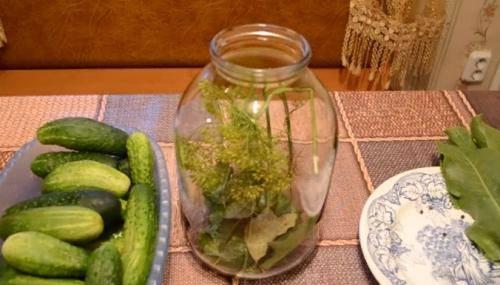 ТОП 11 рецептов малосольных огурцов с листьями хрена и чесноком