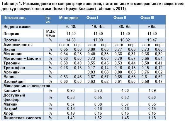 Рацион для кур-несушек в домашних условиях зимой таблица. сколько белков, жиров и углеводов должна получать несушка за день?