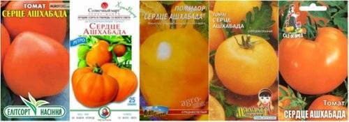 Урожайный и проверенный сорт томатов — «сердце ашхабада»
