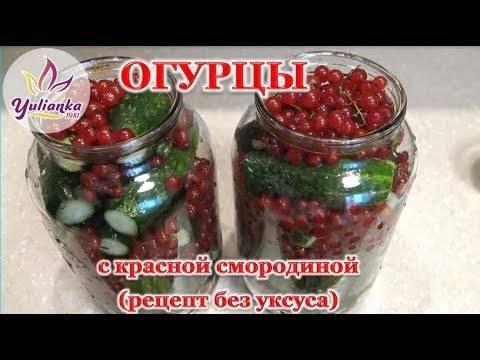 Желе из красной смородины на зиму