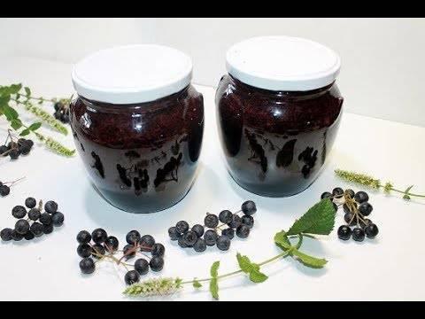 Рецепты полезного варенья из черноплодной рябины