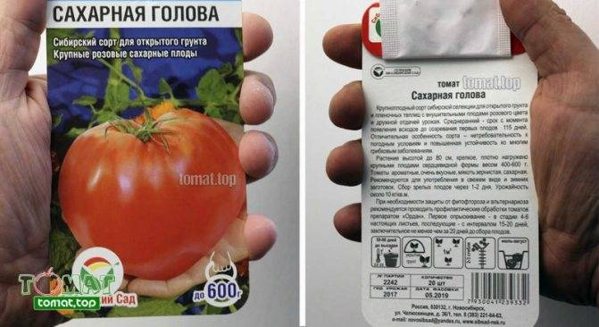 Описание томата сахар коричневый и его культивирование