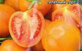 Томат «король сибири»: популярный сорт с массой достоинств