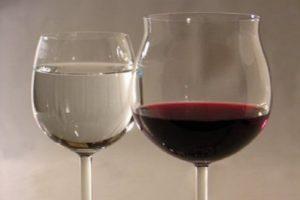 Брожение — основа виноделия