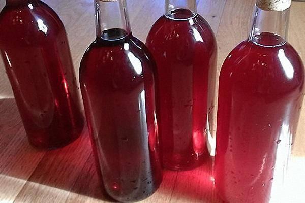 Вино из красной рябины в домашних условиях -5 простых рецептов с фото пошагово