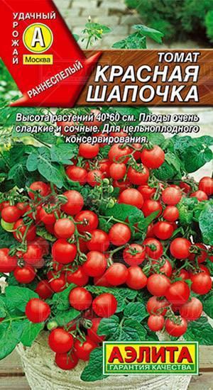 Описание и нюансы выращивания томатов сорта каспар f1