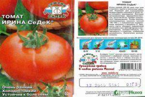 Характеристика и описание сорта томата гордость сибири