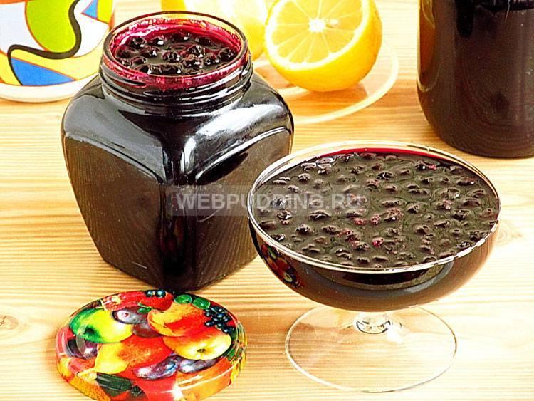 Варенье из черноплодной рябины — 12 простых рецептов в домашних условиях