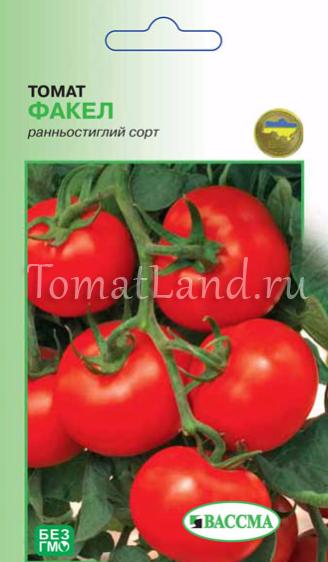 Вкусный, красивый, урожайный — описание и характеристики сорта томата «корнеевский»