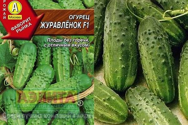 Описание и характеристика сорта огурцов журавленок f1: посадка и уход