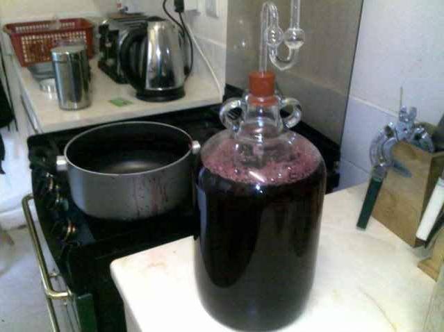 8 простых рецептов приготовления вина из изюма в домашних условиях