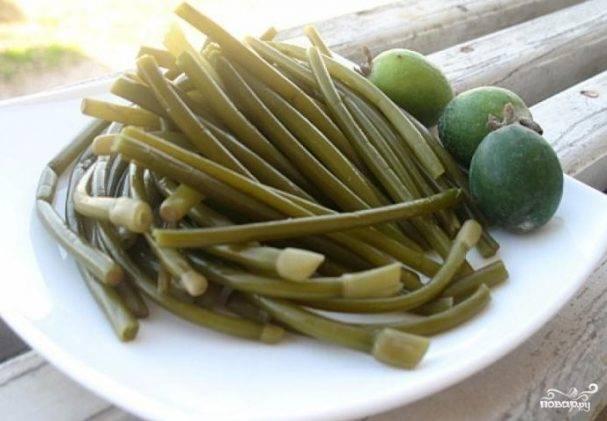 Заготовка лука на зиму: лучшие рецепты и способы