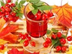 Настойка, наливка и чай из шиповника , 24 домашних рецепта