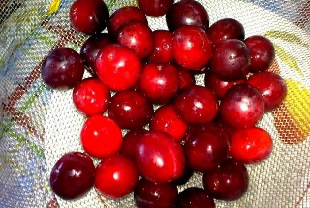 Простой рецепт приготовления консервации алычи, как оливок на зиму