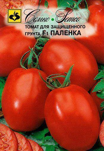 Сорт (гибрид) томата «паленка f1»: описание, характеристика, посев на рассаду, подкормка, урожайность, фото, видео и самые распространенные болезни томатов