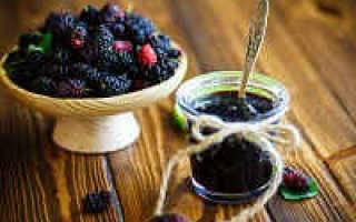 Варенье из шелковицы: 11 лучших рецептов приготовления на зиму, условия хранения