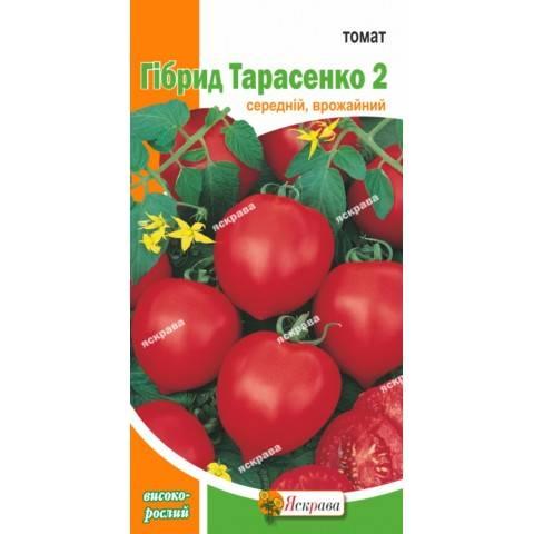Юбилейный тарасенко — лиановидный томат с веерными кистями