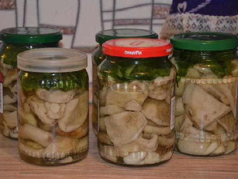 Как делать грибную икру из коровников (свинухов) на зиму, рецепты и хранение заготовок