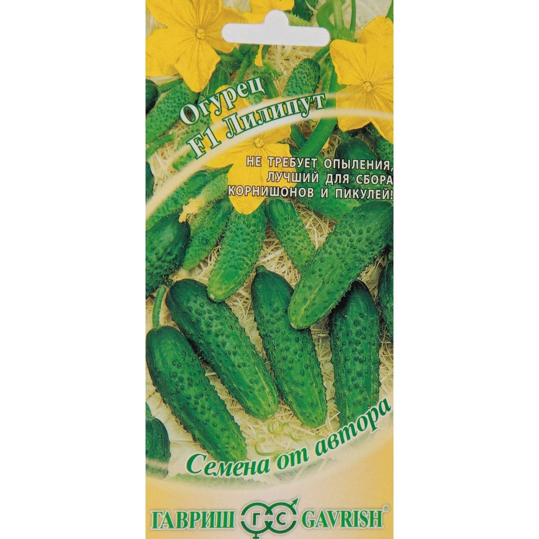 Описание сорта огурцов Лилипут, его характеристика и урожайность