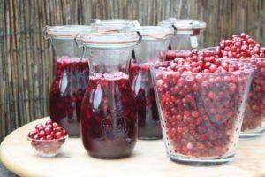 16 рецептов приготовления вкусных заготовок на зиму из слив