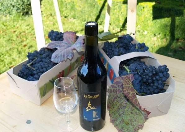 Как закрепить вино в домашних условиях