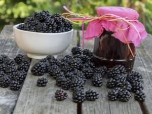Крыжовник, протертый с сахаром, без варки на зиму: 5 рецептов, технология