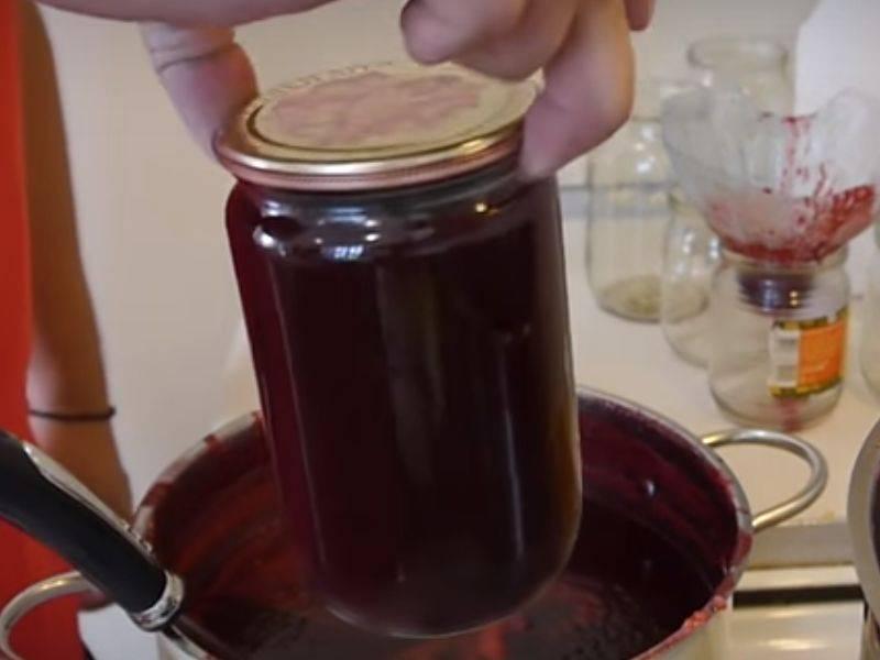 Войлочная вишня. рецепты лучших заготовок из нее: варенье, компот, джем, сок и другие
