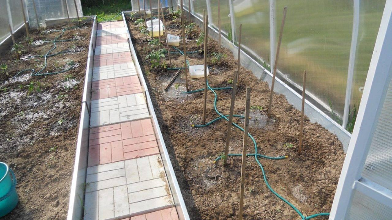 Автополив в теплице (67 фото): высокотехнологичный контроль за влажностью и кислотностью почвы