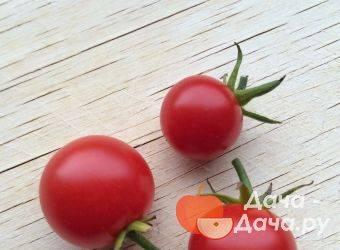 Описание сорта томата кадет, его характеристика и рекомендации по выращиванию