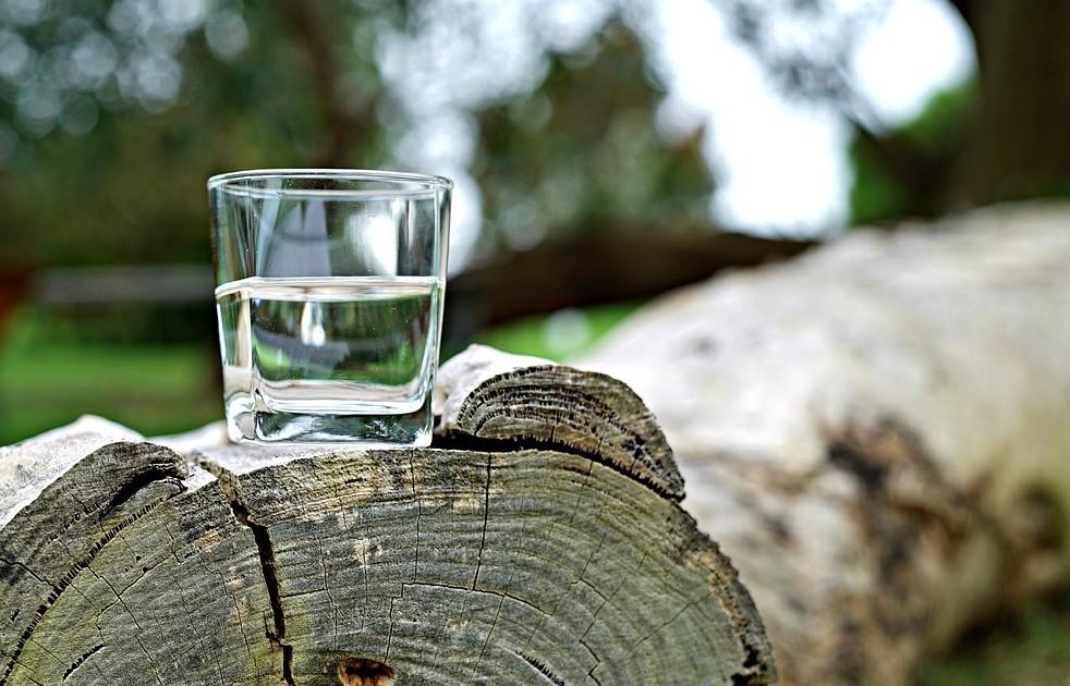 Домашний березовый сок на зиму