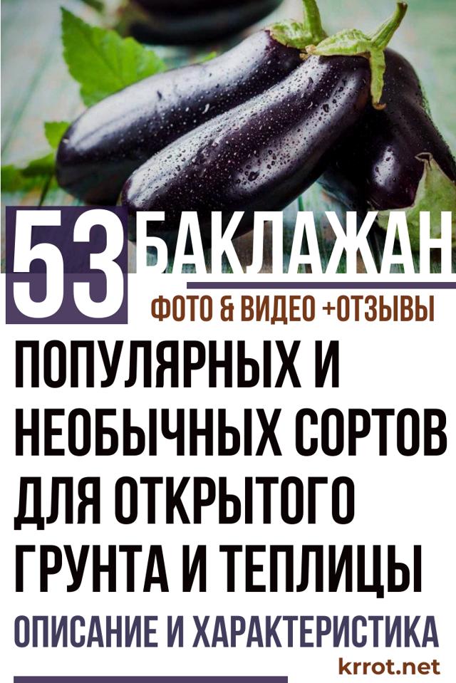 Крупноплодный болгарский перец антей: описание, плюсы и минусы, реальные отзывы
